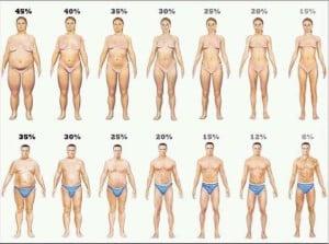 Ejemplos de Porcentajes de Grasa Corporal Saludables