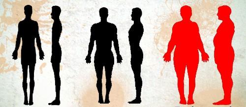Biotipo Endomorfo