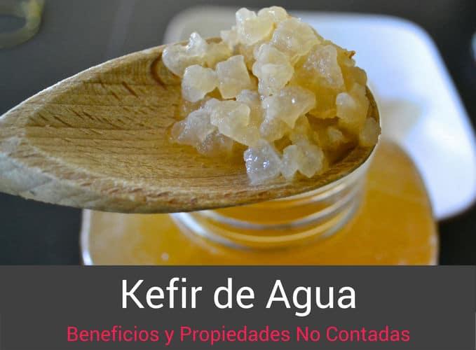 Kefir-de-Agua-Propiedades
