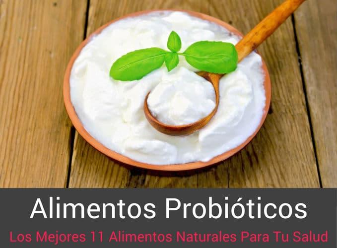 Alimentos Probioticos Naturales