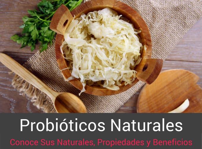 Probioticos Naturales Propiedades y Beneficios
