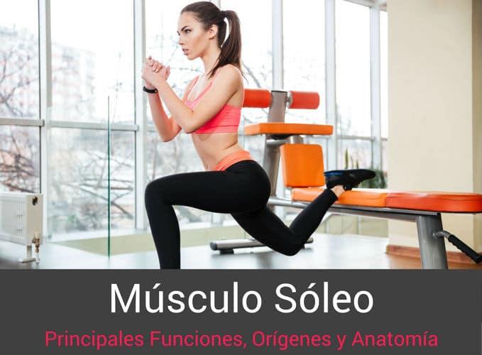 Musculo-Soleo-Origenes-Funciones-Anatomia