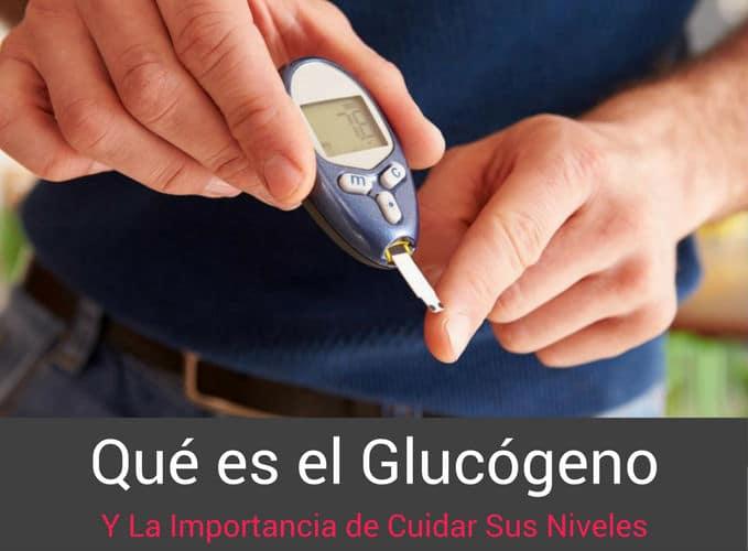 Que es el Glucogeno